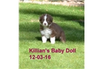 Picture of Killian's Baby Doll