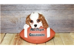 Picture of Teddy our male Cavalier,WWW.SUNRISEPUPS.COM