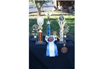 Picture of best in show, won 45 shows