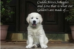 Picture of Forever Guardian Home- Near Pasadena Maryland