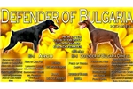 Picture of Defender of Bulgaria kennel