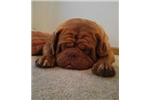 Picture of wrinkles