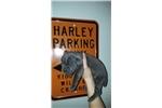 Picture of Cane Cosro Puppy for Sale