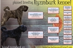 Picture of Bouvier des Flandres FCI puppies reservations