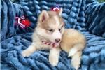 Picture of Eva