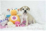 Picture of Rosalie Pugglebull Shipping Included