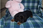 Picture of  Little Marly...What a Darling!