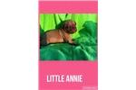 Picture of AKC Female-Little Annie