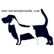 View full profile for Harmony Hounds