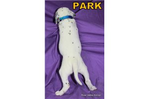 Picture of AKC Park