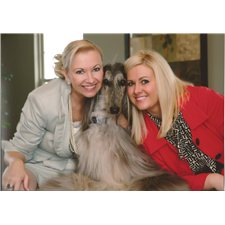 View full profile for Maja Afghan Hounds and Italian Greyhounds