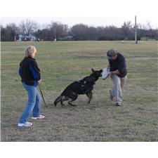 View full profile for Coyote Creek Ranch Akc German Shepherds