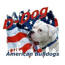 View full profile for D-Dog American Bulldogs