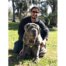 View full profile for Lorenzo Mastinos