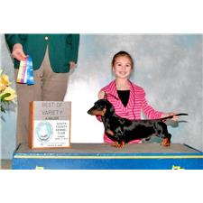 View full profile for Small Wonders Kennel