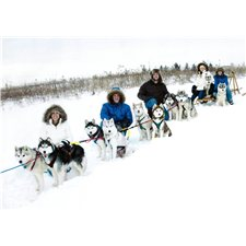 View full profile for Whispering Winds Huskies