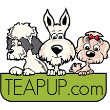 View full profile for Teapup