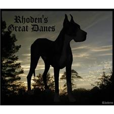 View full profile for Rhoden's Great Danes