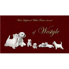 View full profile for Westyle Kennel