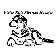 View full profile for White Hills Siberian Huskies