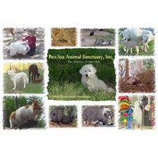View full profile for Bexata Animal Sanctuary, Inc.