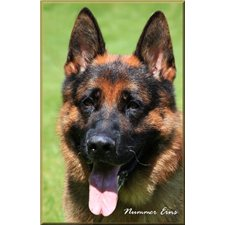 View full profile for Allens Flatcreek Germanshepherds