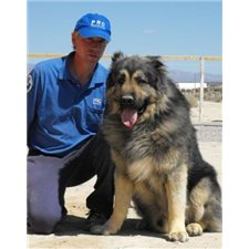 View full profile for Est-Alfa Kennel