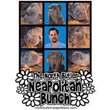 View full profile for North Butler Neapolitans