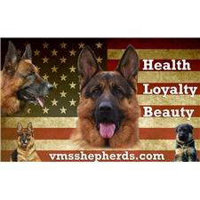 View full profile for Vms Shepherds & Bulldogs