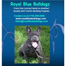 View full profile for Royal Blue Bulldogz