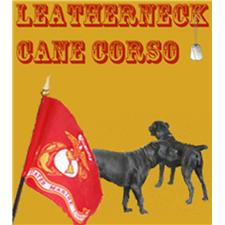 View full profile for Leatherneck Cane Corso
