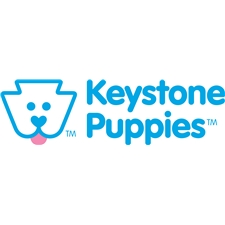 View full profile for Keystone Puppies