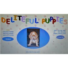 View full profile for Deliteful Puppies