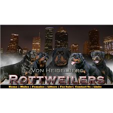 View full profile for Von Heidelberg Rottweilers