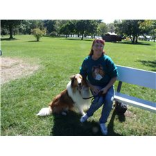 View full profile for HILLTOP COLLIES