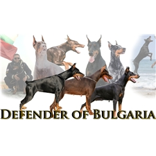 View full profile for Defender Of Bulgaria