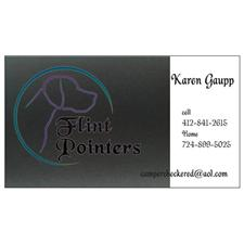 View full profile for Flint Pointers