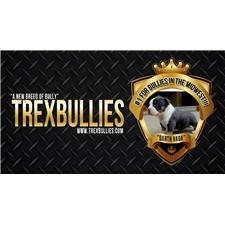 View full profile for Trexbullies