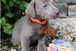 Picture of Kelly