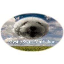 View full profile for Mystic Swirl Lagotto