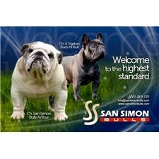 View full profile for Sansimonbulls Kennel