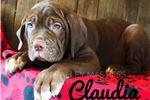 Picture of Claudia