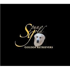 View full profile for Spun Gold Golden Retrievers