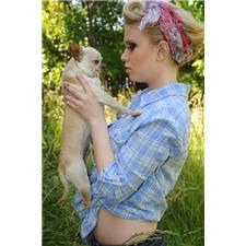 View full profile for Honey Bee Chihuahuas