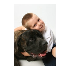 View full profile for Bratay Mastiffs
