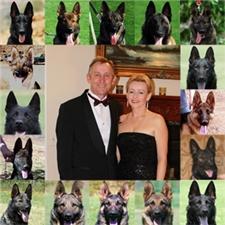 View full profile for Dogsamerica