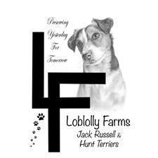 View full profile for Loblolly Farms