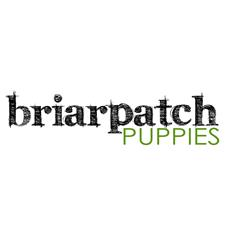View full profile for Briarpatch Puppies