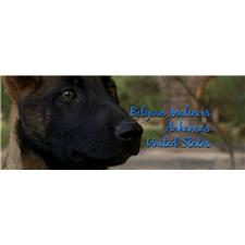 View full profile for Malinois Ar Us