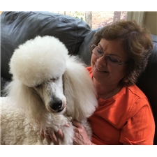 View full profile for Poodle Mojo